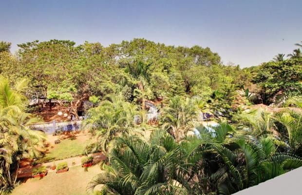 фотографии FabHotel Retreat Anjuna Vagator (ex. Retreat Anjuna a Boutique Resort; Meilleur Resort) изображение №28