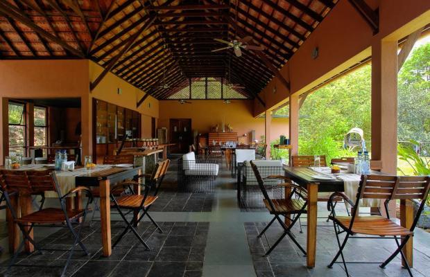 фото отеля Rainforest Boutique Resort изображение №29
