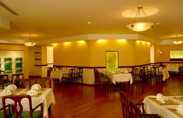 фотографии The International Hotel изображение №8