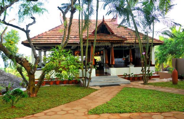 фото отеля Nikki's Nest изображение №33