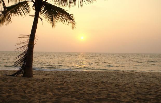 фото A Beach Symphony изображение №2