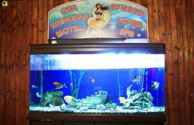 фотографии Sea Princess Motel изображение №16