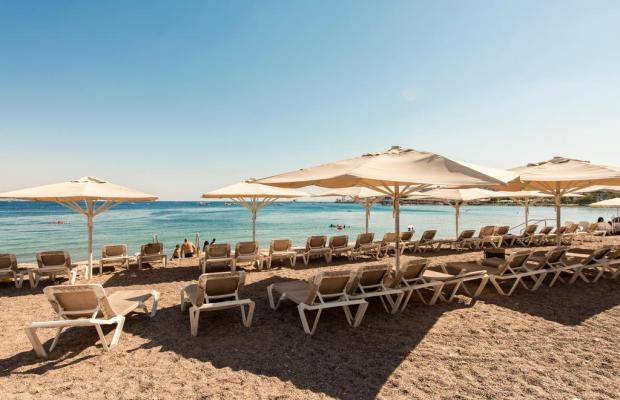 фото отеля Rimonim Eilat (ex. Neptune) изображение №25
