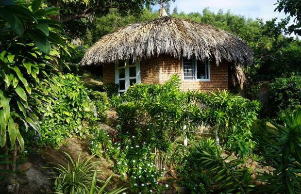 фотографии отеля Veranda Beach Resort изображение №39