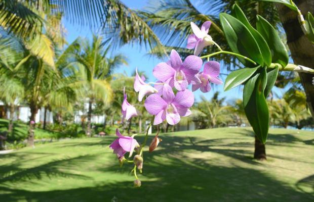 фотографии Sonata Resort & Spa изображение №36