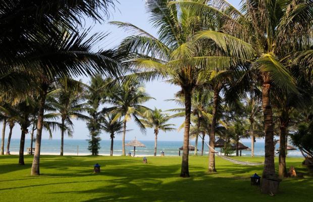фотографии отеля Palm Garden Beach Resort & Spa изображение №43
