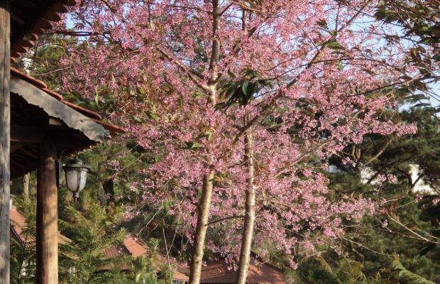 фото Osaka Village DaLat изображение №38