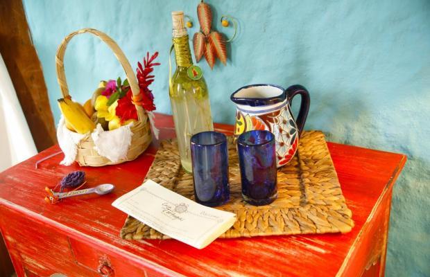 фотографии отеля Casa Las Tortugas изображение №23