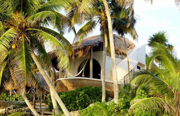 фото отеля Papaya playa изображение №25