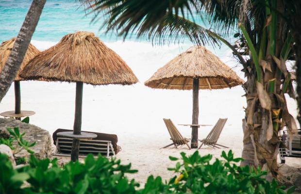 фотографии Papaya playa изображение №20