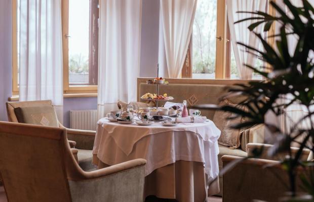 фотографии отеля Ammende Villa изображение №27