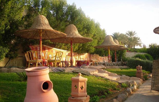 фотографии Park Inn by Radisson Sharm El Sheikh Resort (ex. Radisson Sas Golden Resort) изображение №4