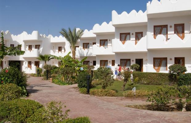 фотографии Swiss Inn Resort Dahab (ex. Swiss Inn Golden Beach Dahab) изображение №8