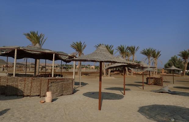 фотографии El Malikia Resort Abu Dabbab (ex. Sol Y Mar Abu Dabbab) изображение №16