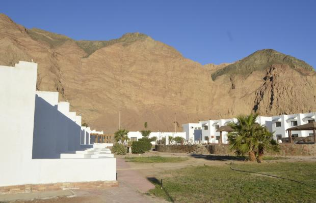 фото отеля Amigo Dahab Hotel изображение №5