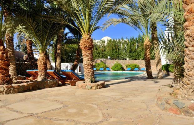 фото отеля Dahab Divers изображение №9