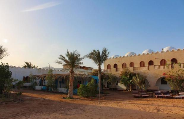 фотографии Dahab Divers Lodge изображение №12