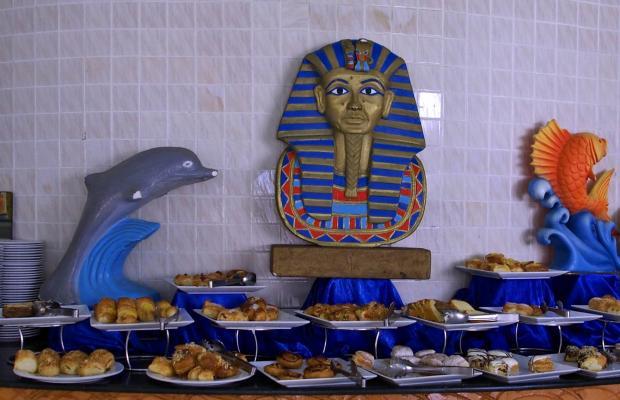 фотографии отеля Wadi Lahmy Azur изображение №15