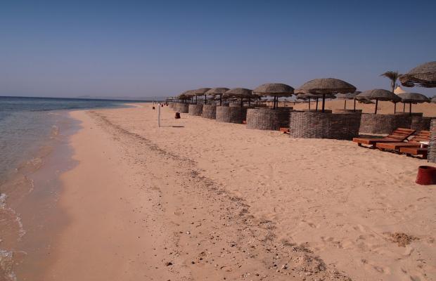 фотографии отеля Gorgonia Beach Resort изображение №35