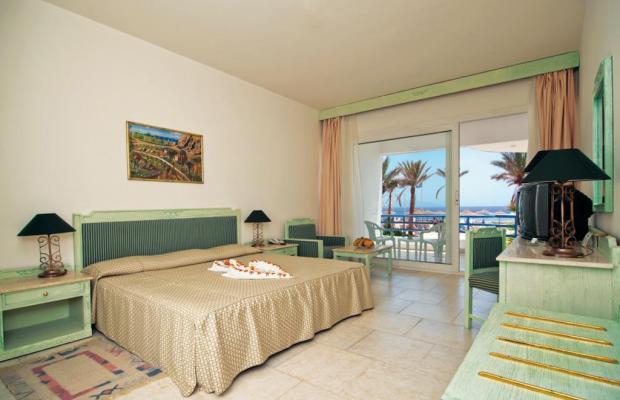 фото отеля Queen Sharm Resort изображение №13