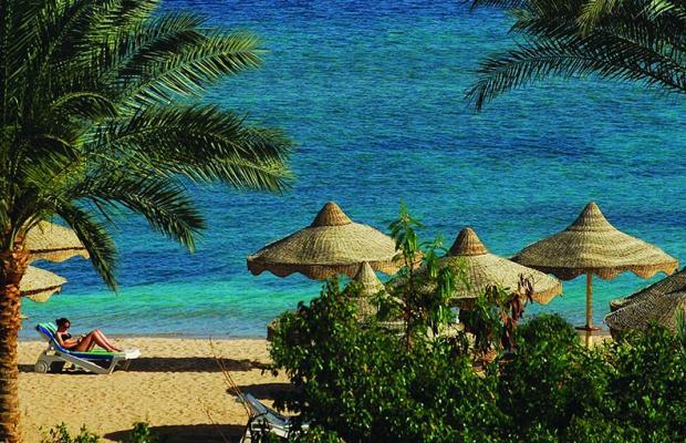 фотографии Baron Resort изображение №36