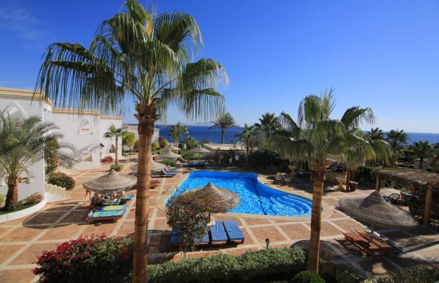 фотографии отеля Club Reef Hotel изображение №11