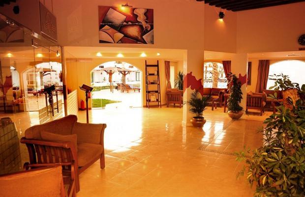 фотографии отеля Ocean Club Red Sea Hotel изображение №19
