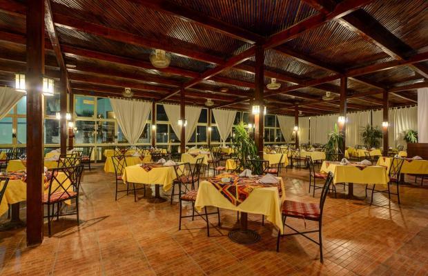 фотографии отеля Shores Aloha Resort (Ex. Otium Hotel Aloha Sharm; Aloha Club & Resort) изображение №19