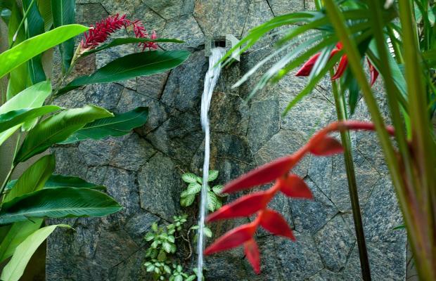 фотографии Reef Villa & Spa изображение №24