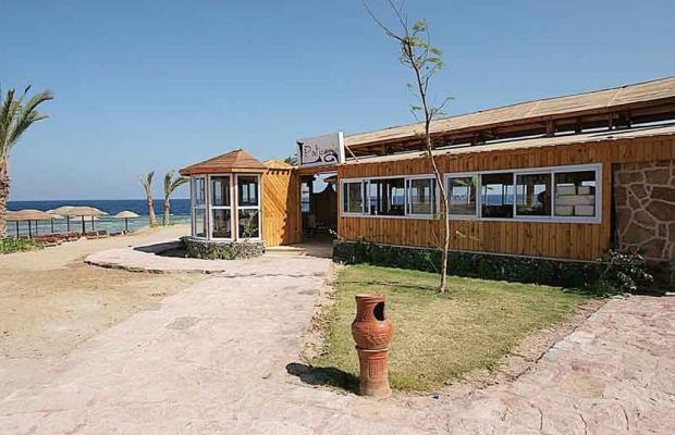 фотографии отеля Swiss Inn Plaza Resort Marsa Alam (ex. Badawia Resort) изображение №7