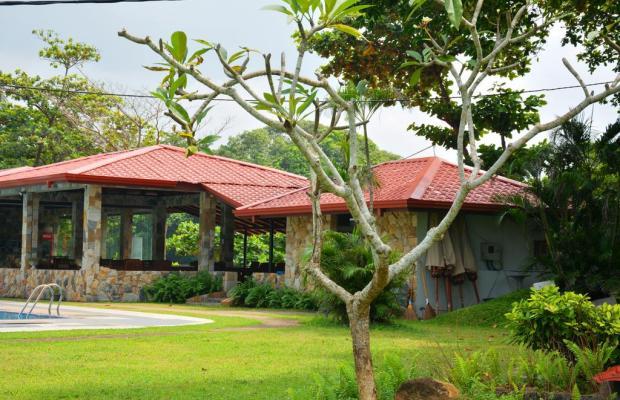 фотографии отеля River View Hotel изображение №19