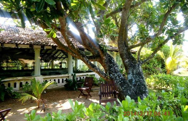 фотографии отеля Kosgoda Beach изображение №3