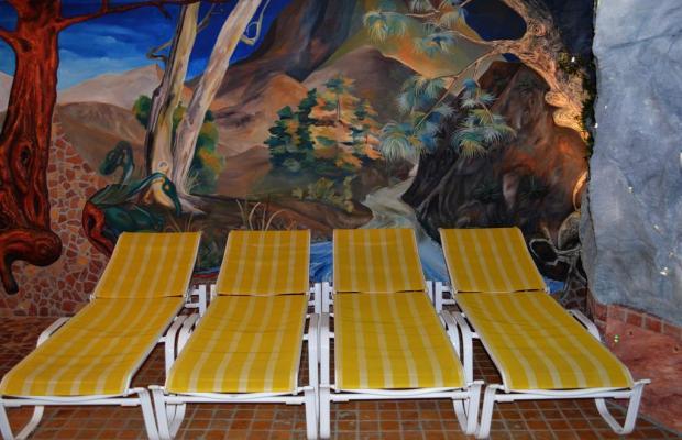 фотографии отеля Theresia изображение №15
