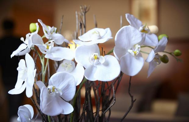 фотографии отеля Golden Tulip Andorra Fenix (ex. Fenix) изображение №23