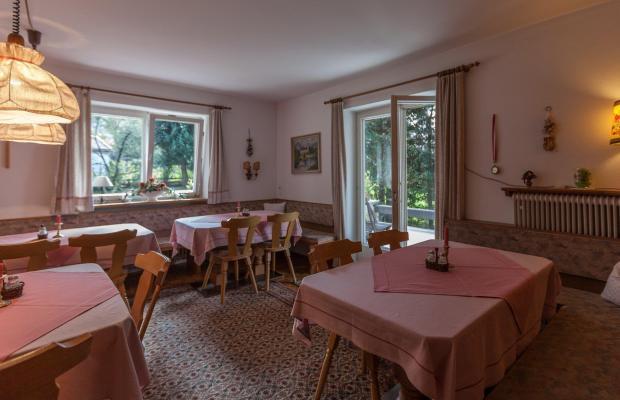 фотографии отеля Pension Bergheim изображение №7