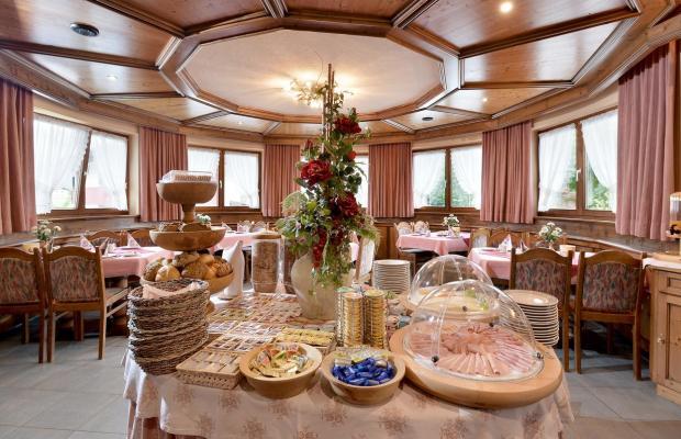 фотографии отеля Hotel Garni Montana изображение №11