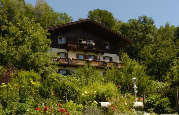 фотографии Landhaus Antonia изображение №16