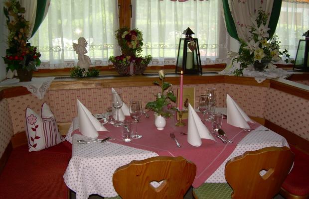 фотографии Hotel Pension Tannerhof изображение №12