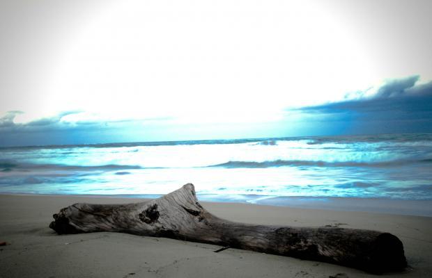 фото отеля Faranda Beach House Cabarete (ex. Celuisma Cabarete) изображение №29