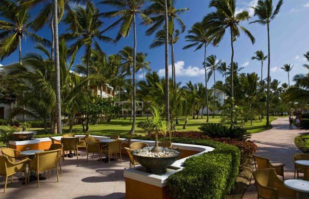 фото отеля VIK Arena Blanca (ex. LTI Beach Resort Punta Cana) изображение №25