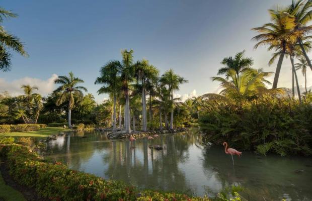фото Melia Caribe Tropical Hotel изображение №58
