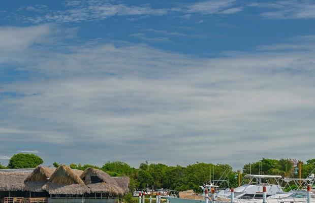 фото Punta Cana Resort and Club изображение №26