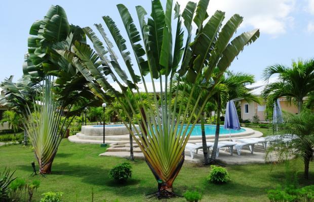 фотографии Bohol Sunside Resort изображение №60