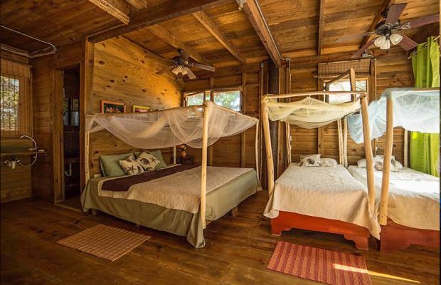 фото отеля Cabarete Maravilla Eco Lodge & Beach (ex. Casa Maravilla) изображение №5