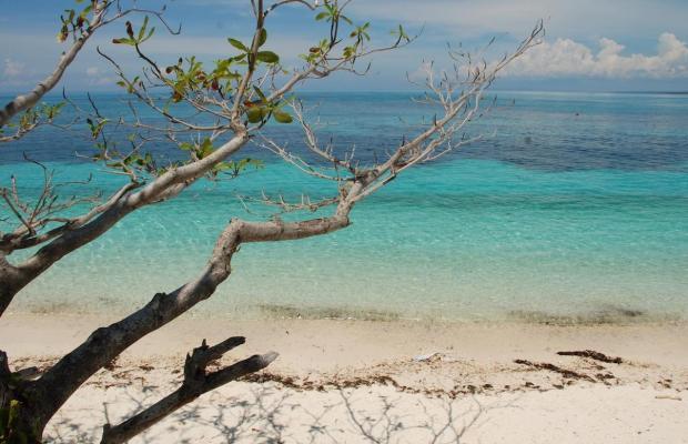 фотографии отеля Malapascua Legend Water Sports & Resort изображение №35