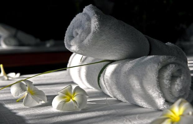 фотографии отеля Dolphin House Resort Moalboal изображение №15