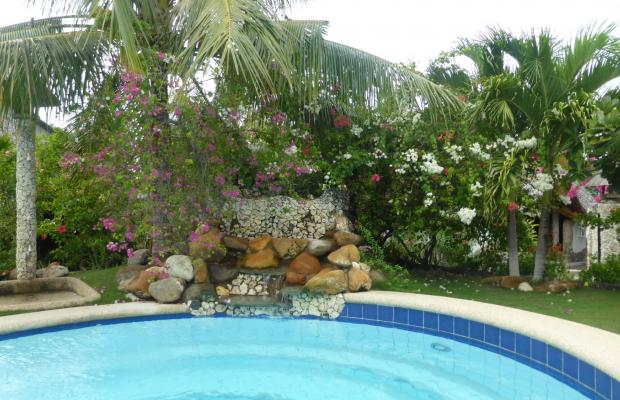 фотографии Dolphin House Resort Moalboal изображение №12
