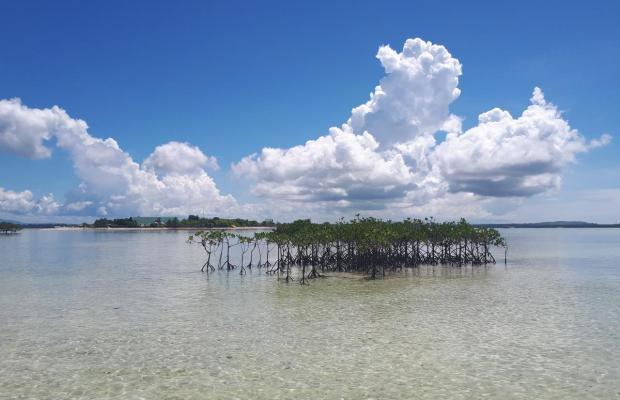 фото Virgin Island Resort & Spa изображение №10