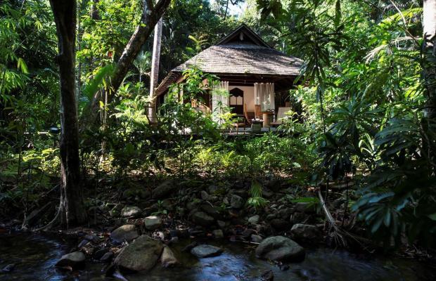 фотографии The Datai Langkawi изображение №40
