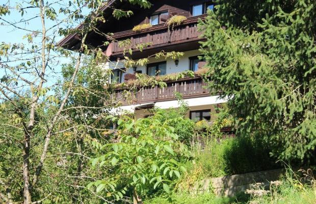 фотографии отеля Pension Nocksteinblick изображение №15